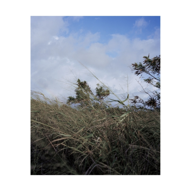 019 2008 Kauai