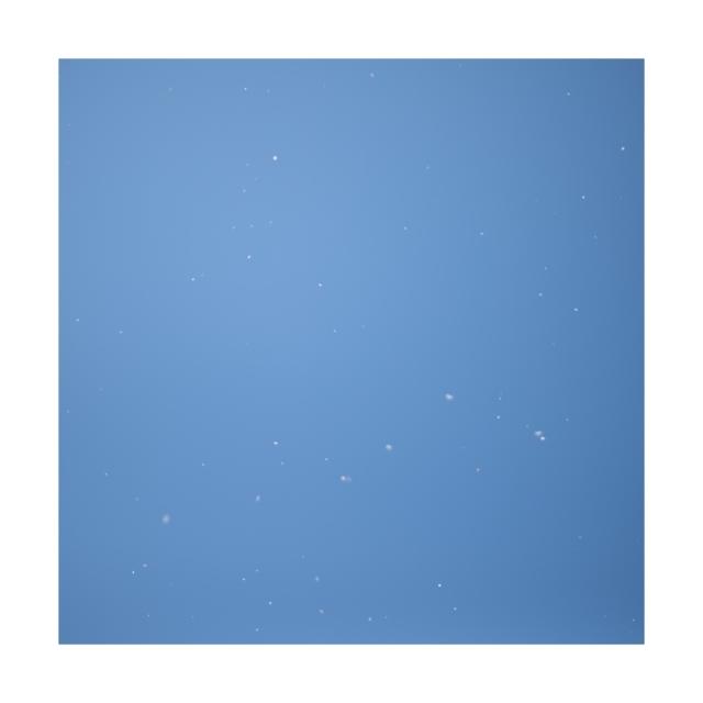 #001 sakura,snow,sky