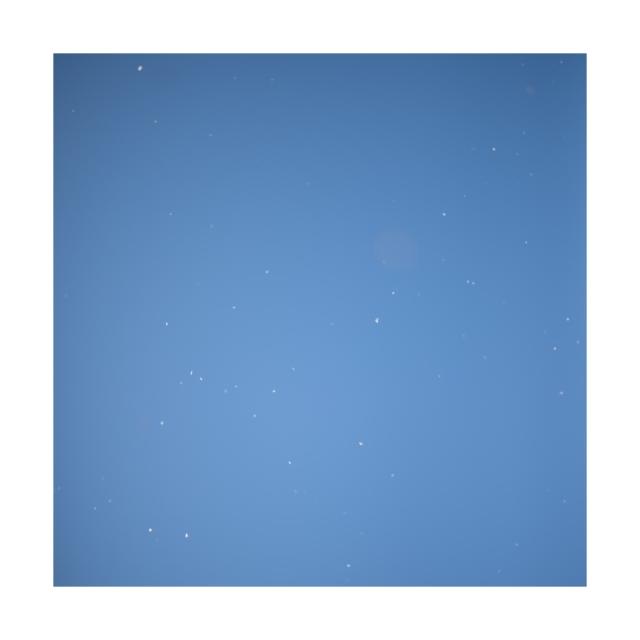 002 sakura,snow,sky