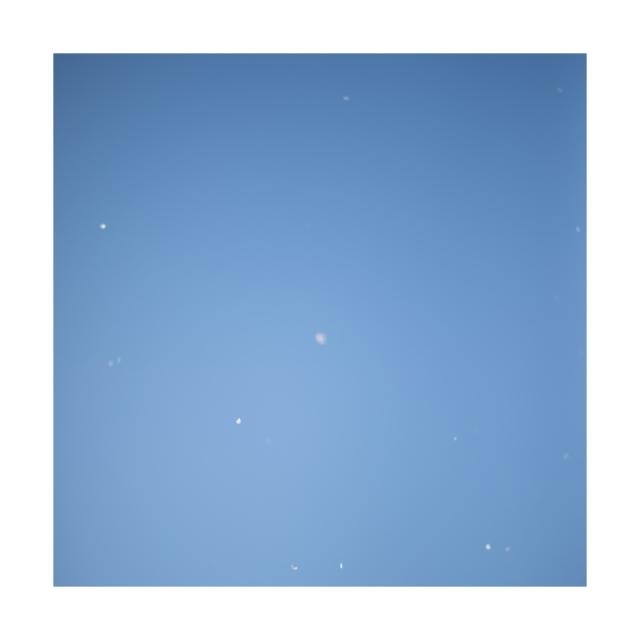 003 sakura,snow,sky