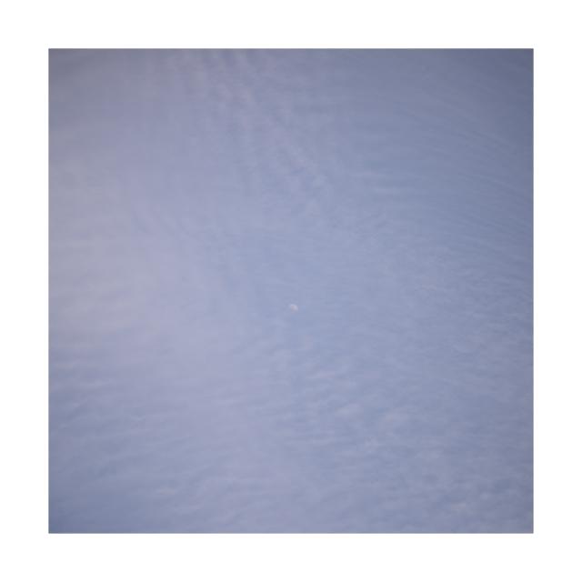 #008 sakura,snow,sky